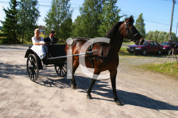 Royalty Free Photo of a Couple in a Horse Carriage
