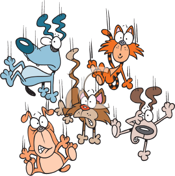 Royalty Free Clipart Image of a Falling Cats and Dogs