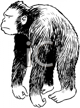Royalty Free Clipart Image of an Ape
