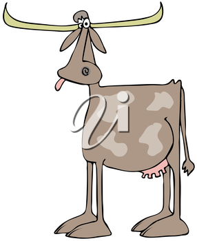Royalty Free Clipart Image of a Longhorn Cow