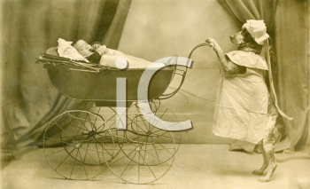 Royalty Free Photo of a Dog in a Costume Pushing a Baby in a Carriage