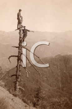 Royalty Free Photo of a Men in a Dead Tree on a Mountain