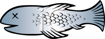 Royalty Free Clipart Image of a Dead Fish