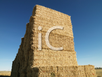 Royalty Free Photo of a Tall Stack of Bales of Hay in a Rural Setting