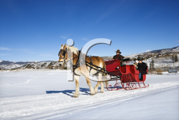 Young Caucasian couple and mid adult man on horse drawn sleigh ride through winter landscape.