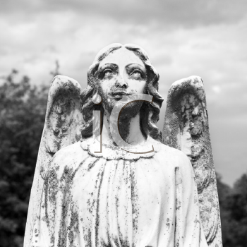 Royalty Free Photo of a Guardian Angel Statue in a Graveyard