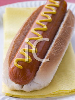 Royalty Free Photo of a Hotdog With Mustard