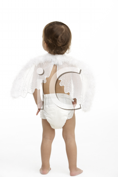 Back View Of Toddler Wearing Nappy And Angel Wings