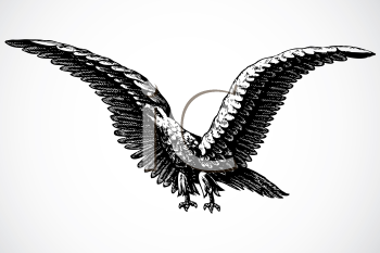 Royalty Free Clipart Image of a Screaming Eagle
