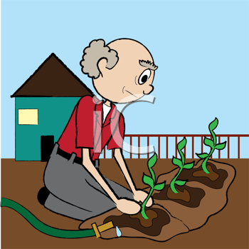 Royalty Free Clipart Image of an Old Man Plating Seedlings