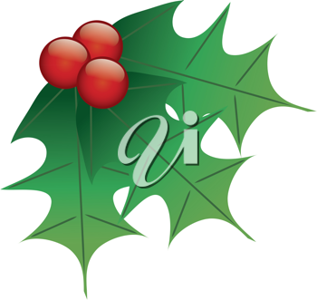 Clip art illustration of Christmas holly leaves and berries.