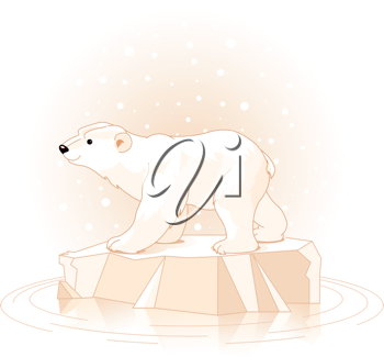 Polar Bear on the ice floe