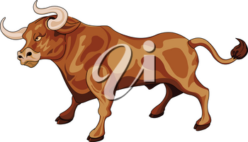 Illustration of cute bull