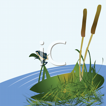 Royalty Free Clipart Image of Cattails and a Frog