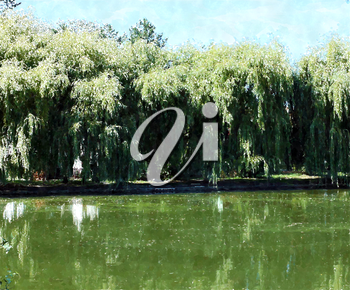 Beautiful landscape with willow trees by the water, watercolor style background
