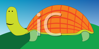 Royalty Free Clipart Image of a Turtle