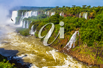 The most full-flowing waterfalls Iguazu. Border of Argentina, Brazil and Paraguay. Andean condors fly in the water dust. Concept of active and extreme tourism