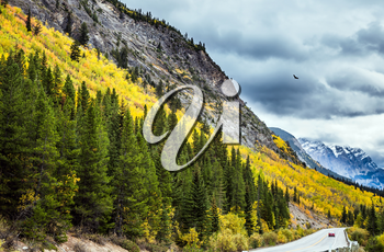 The grandiose nature of the Rockies of Canada. The road 93 Icefields Parkway. The concept of active tourism