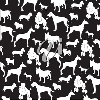 dogs on black and white background