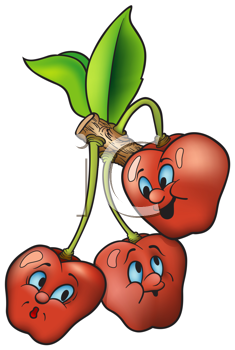 Royalty Free Clipart Image of Cherries on a Vine