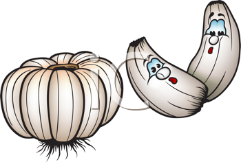 Royalty Free Clipart Image of Garlic