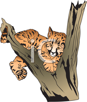 Royalty Free Clipart Image of a Baby Leopard in a Tree