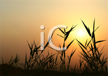 Royalty Free Clipart Image of a Sunrise Over a Field