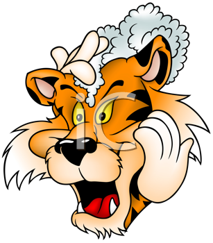 Royalty Free Clipart Image of a Tiger Washing Its Fur