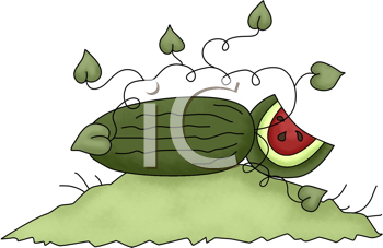 Royalty Free Clipart Image of a Watermelon