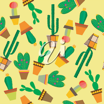 Yellow background with cactus flowers in pots