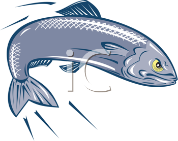 Royalty Free Clipart Image of an Angry Fish