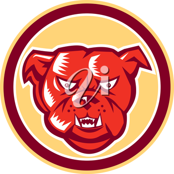 Illustration of an angry bulldog dog mongrel head mascot showing fangs facing front set inside circle on isolated background done in retro style.