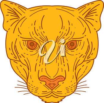 Mono line style illustration of a cougar mountain lion head set on isolated white background viewed from front.