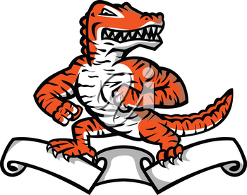 Mascot icon illustration of a ferocious reptilian alligator, gator or crocodile with Bengal tiger color and stripes in fighting stance on top of ribbon or scroll on isolated background in retro style.