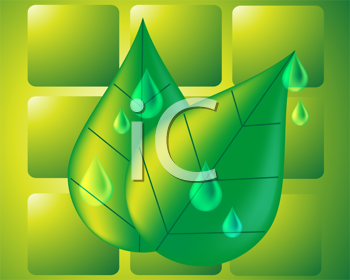 Royalty Free Clipart Image of a Water Drop and Leaf Background