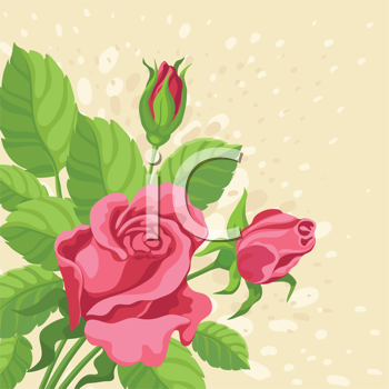 hand drawing illustration of a roses background