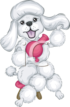 Royalty Free Clipart Image of a Poodle With a Blow Dryer