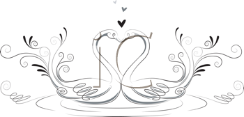 Royalty Free Clipart Image of Two Swans Forming a Heart