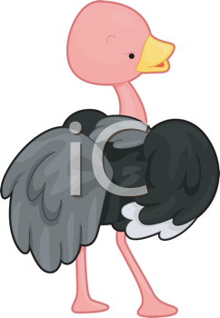 Royalty Free Clipart Image of an Ostrich