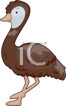 Royalty Free Clipart Image of an Emu