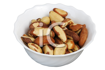 Brazil nut (Bertholletia excelsa) on a white cup on a white background, isolated.