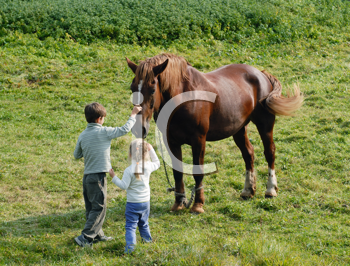Royalty Free Photo of a Boy and Girl With a Horse