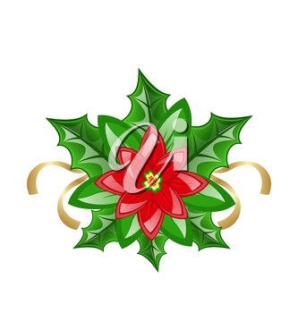 Illustration flower poinsettia for christmas decoration - vector