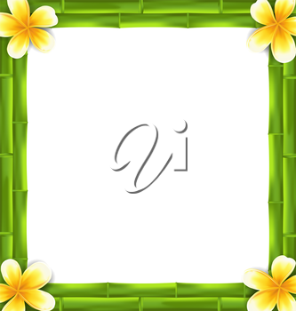 Illustration Natural Frame Made Bamboo and Frangipani Flowers, Copy Space for Your Text - Vector
