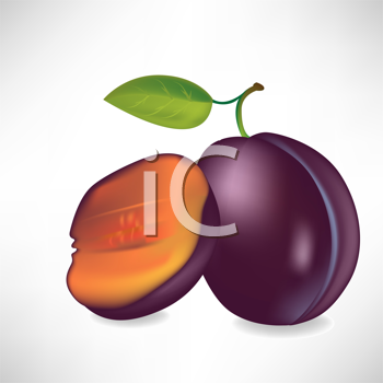 Royalty Free Clipart Image of a Plum