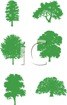 Royalty Free Clipart Image of Trees