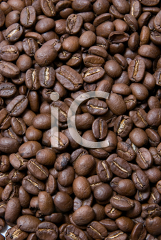 Royalty Free Photo of a Coffee Bean Background