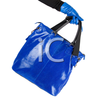 Royalty Free Photo of a Woman Holding a Purse