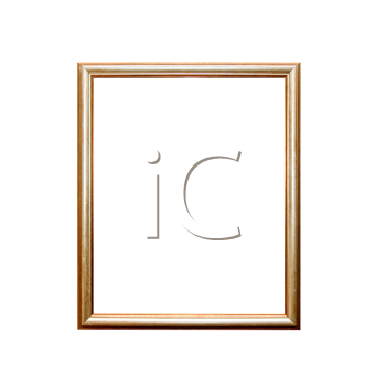 Royalty Free Photo of a Picture Frame