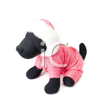 Dogs clothing at the dummy isolated on a white